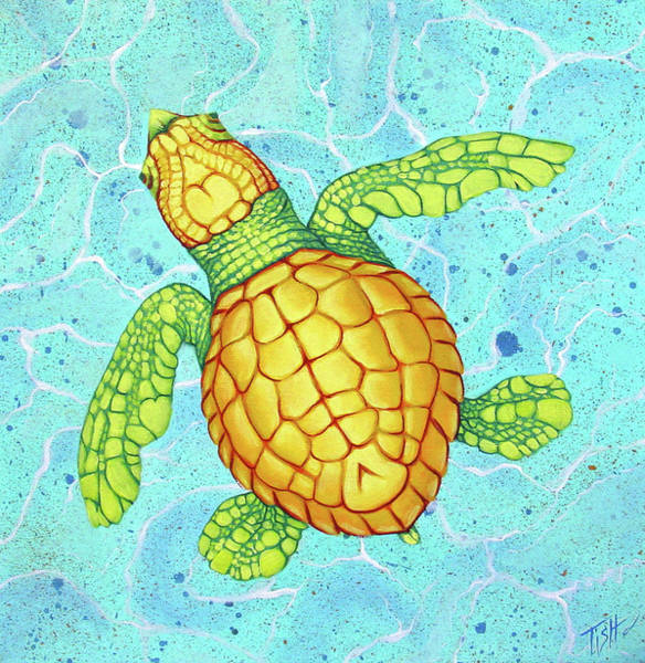 Painting - Baby Sea Turtle by Tish Wynne