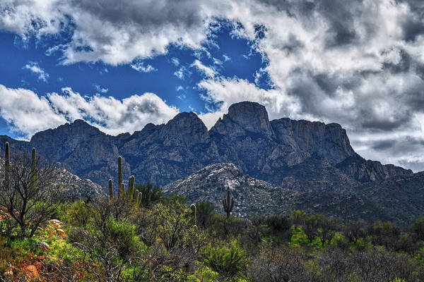 Photograph - Backside Of The Catalinas by Chance Kafka