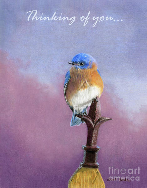 Iron Fence Wall Art - Painting - Backyard Bluebird- Thinking Of You Cards by Sarah Batalka