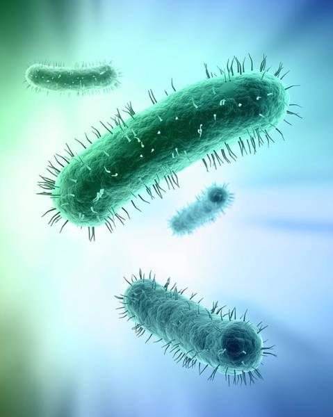 Bacteria Wall Art - Digital Art - Bacteria, Artwork by Andrzej Wojcicki