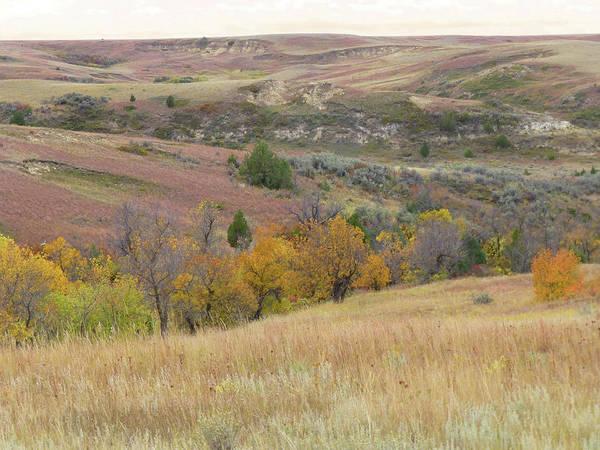 Photograph - Badlands Prairie Rhapsody by Cris Fulton