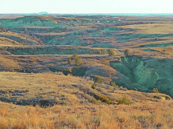 Photograph - Badlands Realm Reverie by Cris Fulton