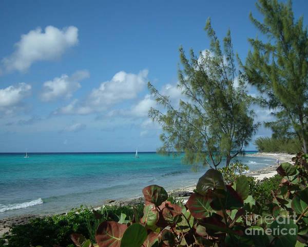 Photograph - Bahama Breeze by Kristen Abrahamson