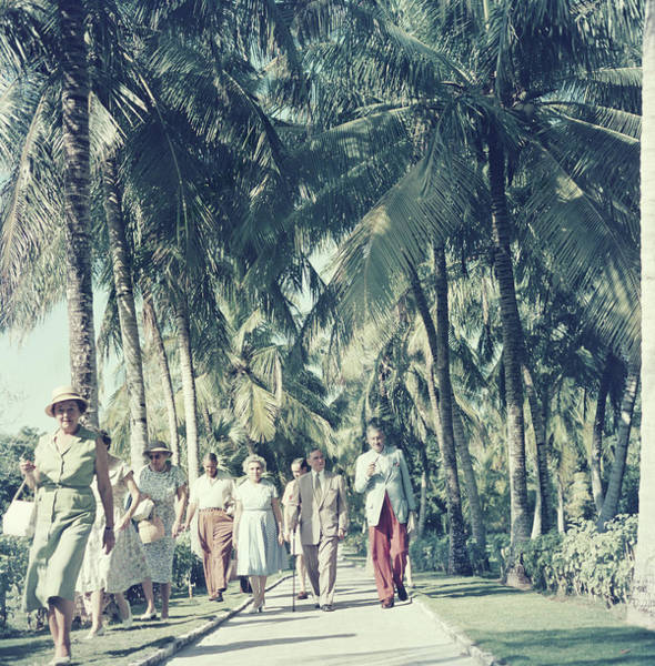 Walking Photograph - Bahamas Palm Trees by Slim Aarons