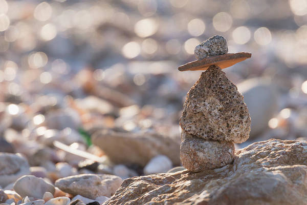 Photograph - Balance In Nature by Michael Goyberg