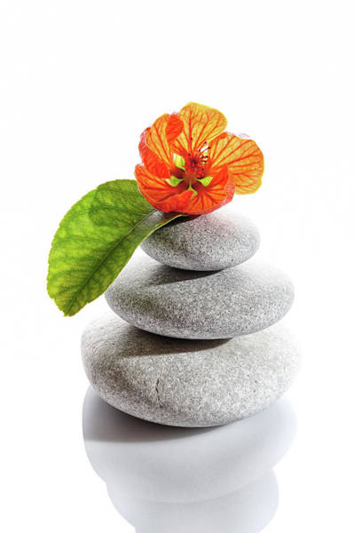 Spirituality Photograph - Balanced Stones And Red Flower by Gm Stock Films