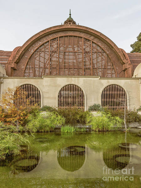 Photograph - Balboa Park Botanical Building San Diego by Edward Fielding