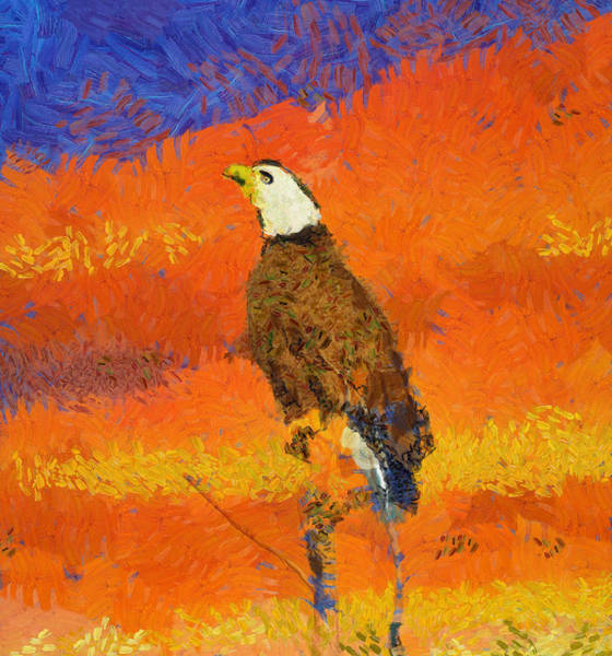 Painting - Bald Eagle Sunset Sky by Dan Sproul