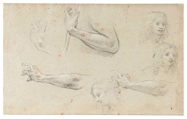 Wall Art - Painting - Baldassare Franceschini, Called Il Volterrano  Studies Of  Hands by Celestial Images