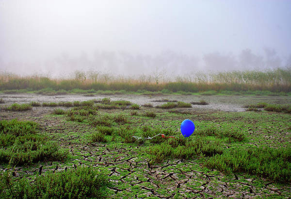 Photograph - Balloon In The Lake Bed by Anthony Jones