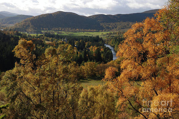 Photograph - Balmoral Autumn by Phil Banks