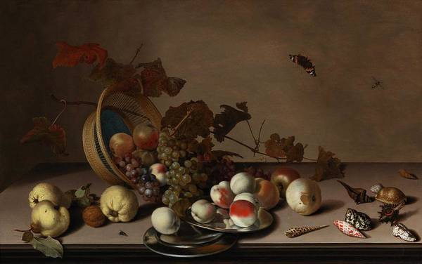 Wall Art - Painting - Balthasar Van Der Ast  Middelburg 1593 94 1657 Delft  A Fruit Still Life With A Wicker Basket, Shell by Celestial Images
