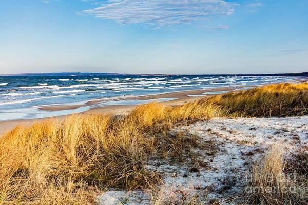 Wall Art - Photograph - Baltic Sea With Golden Dune Grass by Michal Bednarek