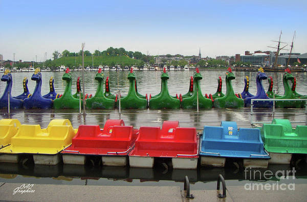 Photograph - Baltimore Paddle Boats by CAC Graphics