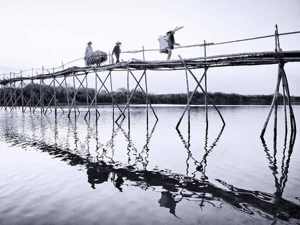 Photograph - Bamboo Bridge by Dominic Piperata