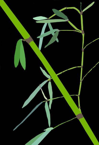 Digital Art - Bamboo Impressions E Bw by Jim Dollar