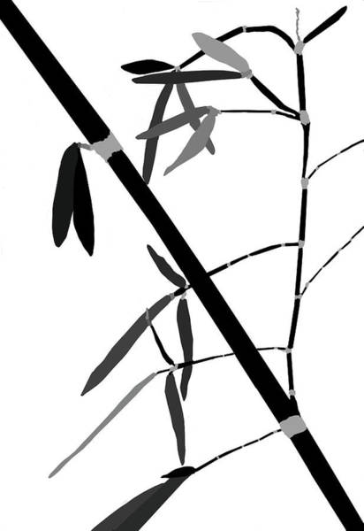 Digital Art - Bamboo Impressions F Bw by Jim Dollar
