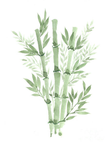Bamboo Painting - Bamboo Plant Green Watercolor by Joanna Szmerdt