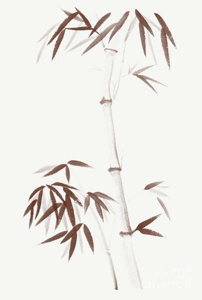 Single Leaf Mixed Media - Bamboo Stalk And A Young Root Shoot With Bushy Leaves Asian Illu by Awen Fine Art Prints