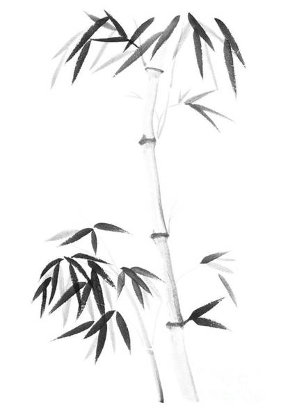 Single Leaf Mixed Media - Bamboo Stalk And A Young Root Shoot With Bushy Leaves Sumi-e Des by Awen Fine Art Prints