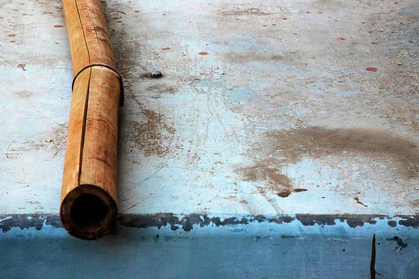 Photograph - Bamboo Stick by Prakash Ghai