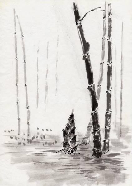 Bamboo Digital Art - Bamboo Trees, Ink Painting, Vignette by Daj