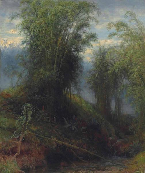 Painting - Bamboos, Trinidad by Michel Jean Cazabon