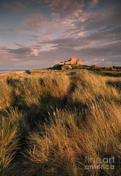 Preston Castle Photograph - Bambrugh Castle And Sand Dunes, Northumberland by Philip Preston