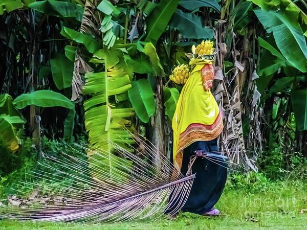 Photograph - Banana Harvest, Zanzibar, Tanzania by Lyl Dil Creations