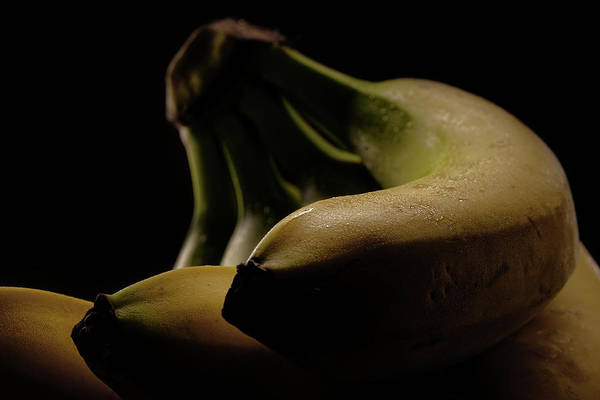Wall Art - Photograph - Bananas by Richard Rizzo