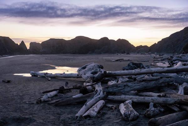 Photograph - Bandon Driftwood by Steven Clark