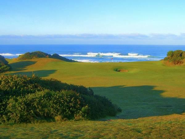 Oregon Dunes Photograph - Bandon Dunes Golf Course - Hole #12 by Scott Carda