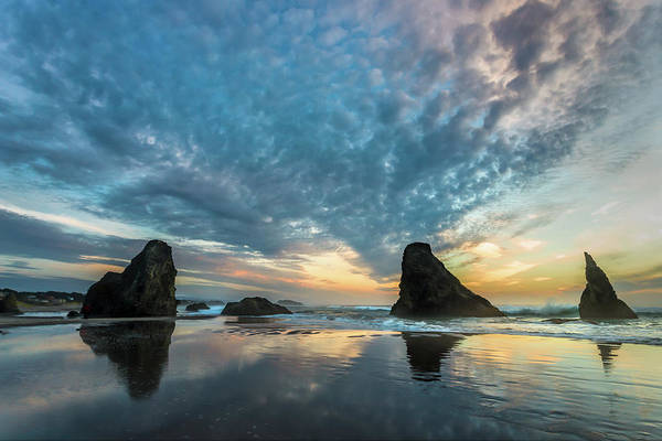 Wall Art - Photograph - Bandon by Peter Tellone