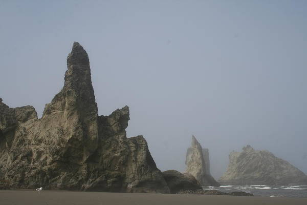Photograph - Bandon Rocks Faint by Dylan Punke