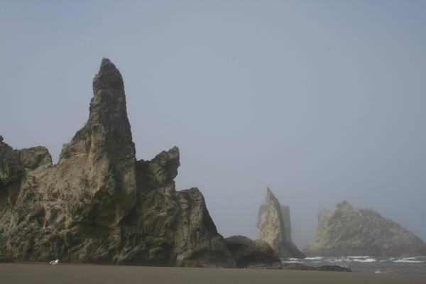 Photograph - Bandon Rocks Faint by Dylan Punke