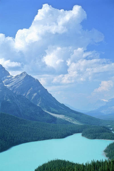 Peyto Lake Wall Art - Photograph - Banff National Park In Alberta, Canada by Wallace Garrison