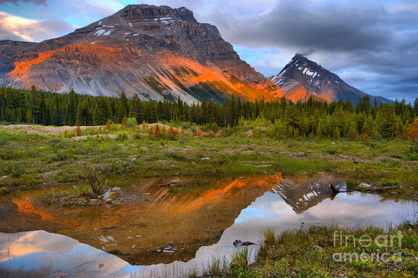 Photograph - Banff Pond Sunset Reflections by Adam Jewell
