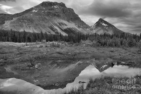 Wall Art - Photograph - Banff Pond Sunset Reflections Black And White by Adam Jewell