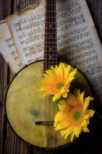 Wall Art - Photograph - Banjo And Two Sunflowers by Garry Gay
