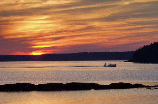 Photograph - Bar Harbor Dawn by Rein Nomm