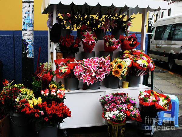 Photograph - Baranco Bouquets by Rick Locke