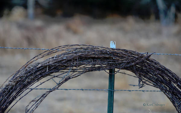 Wall Art - Photograph - Barbed Wire   New Strands Old Roll by Kae Cheatham