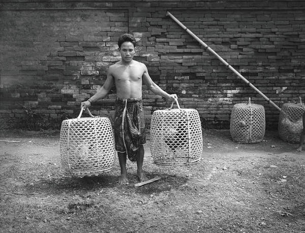 Birdcage Photograph - Bare-chested Balinese Man Holding Two by H. Armstrong Roberts
