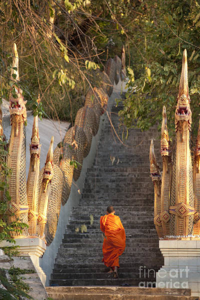 Wall Art - Photograph - Barefooted Buddhist Monks In Chiang Mai by 10 Face