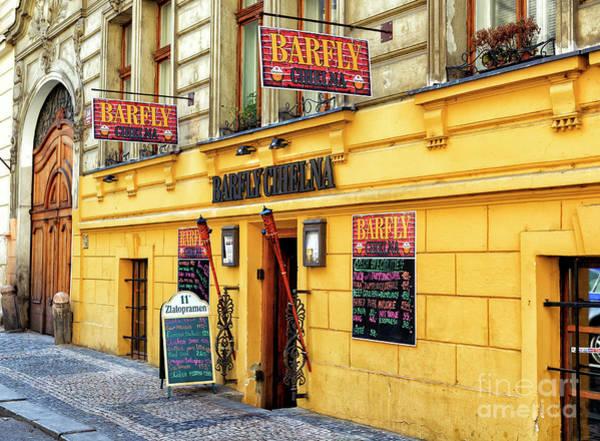 Photograph - Barfly Cihelna In Prague by John Rizzuto