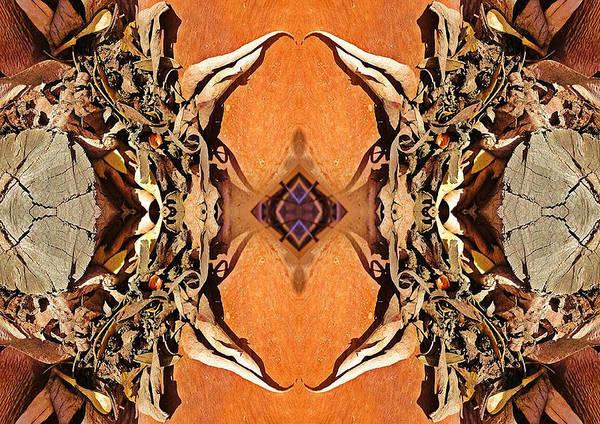 Digital Art - Bark Crabs by Sherrie Hall