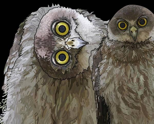 Digital Art - Barking Owls 2 by Joan Stratton