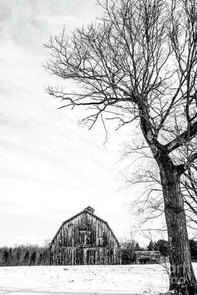 Photograph - Barn by Alana Ranney