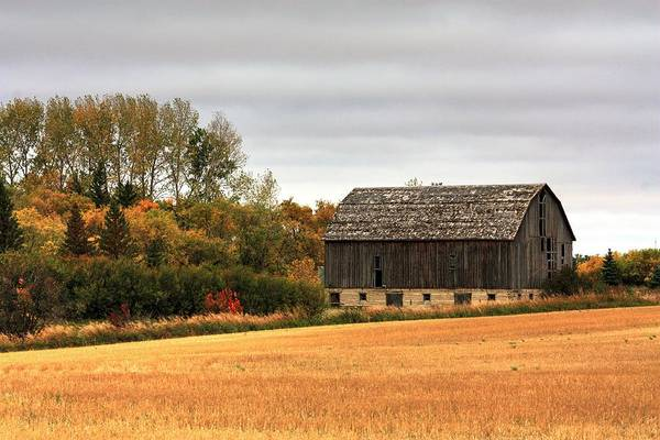 Photograph - Barn Fall by David Matthews