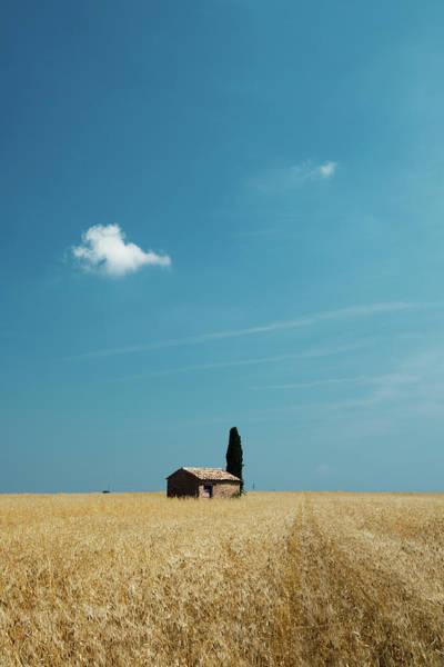 Barn Photograph - Barn In Crop Field by Matteo Colombo